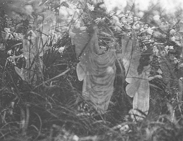 Dossier negro: Las Hadas de Cottingley Cottingley-sunbath